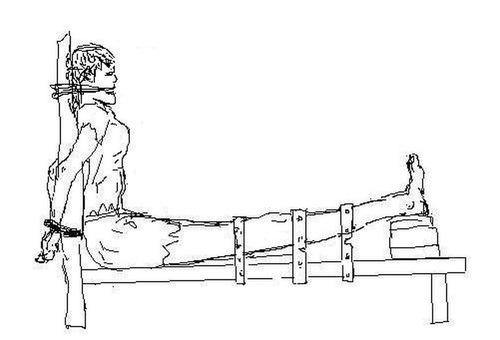 Torture-Illustration-Tiger-Bench